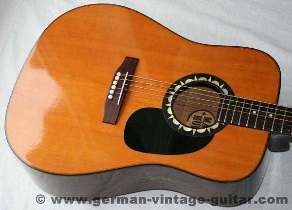 6-saitige Westerngitarre Höfner 4890 Blue Grass von 1984 aus 1. Hand